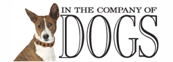 InTheCompanyOfDogs.com